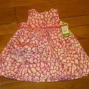 Lilly Pulitzer baby lolly dress